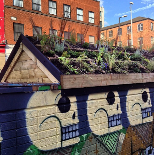 Nathan Evan's skeletons have gained some greenery recently.  instagram.com/outhousemcr